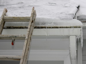 Ice Dam on Roof (Leon Collins, Public Adjuster Services)